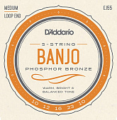 Струны для банджо D'Addario Phosphor Bronze EJ55 Medium (5 шт)